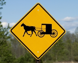 Amish-buggy-How-To_Medium_ID-463251